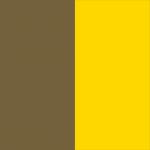 Gold/Yellow