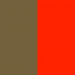 Gold/Scarlet